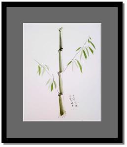 bamboo_2009_07_05_01